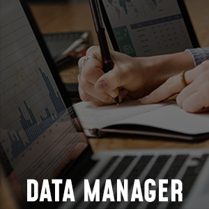 Data_manager_eng.jpg